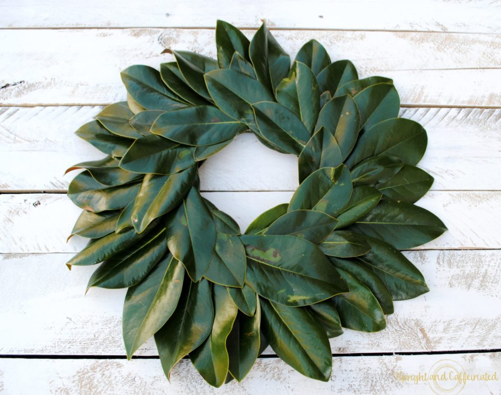 Excellent DIY Magnolia wreath tutorial. Make this wreath for under five dollars using magnolia leaves, hot glue and a Styrofoam ring! Perfect DIY project for a beginner!