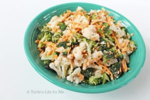 A great side dish for a picnic! Packed with veggies and a sure hit for crowds!