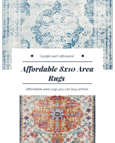 Affordable 8 X 10 Area Rugs
