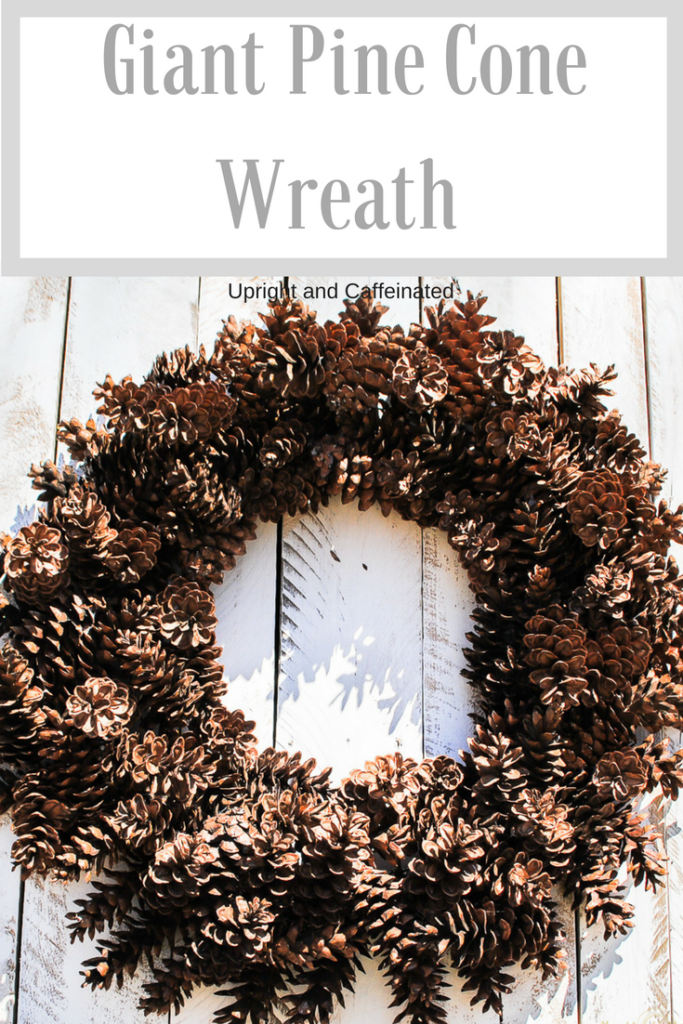 Make this giant Pine Cone Wreath for Fall or Christmas. Click to see the VIDEO!